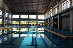 Image of the Pool